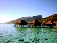 Exotic Honeymoon-Trends